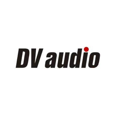 DV-AUDIO