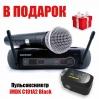 Радиосистема SHURE PGX24ESM58