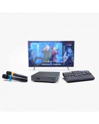 Караоке-комплект EvoBox с микрофонами SE • 200D