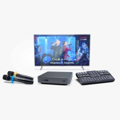 Караоке-комплект EvoBox Plus с микрофонами SE • 200D