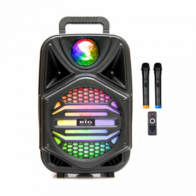 автономная акустическая система BIG110MAGIC BALL USB/MP3/FM/BT/TWS + 2pcs VHF mic