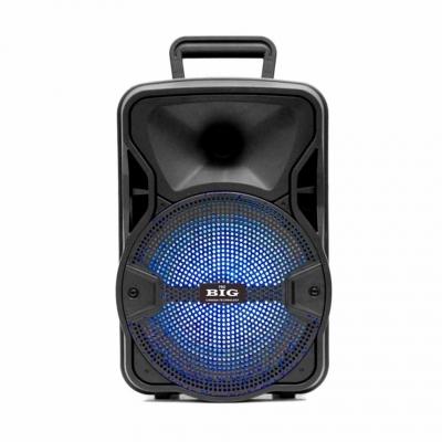 автономная акустическая система BIG804GALAXY USB/MP3/FM/BT/TWS + Шнуровой микрофон
