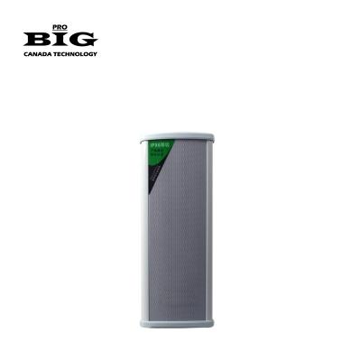 Всепогодная акустическая система BIG SH30