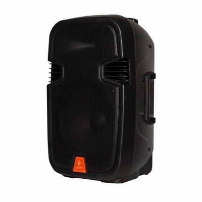 Автономная акустическая система Clarity MAX12MBAW-U