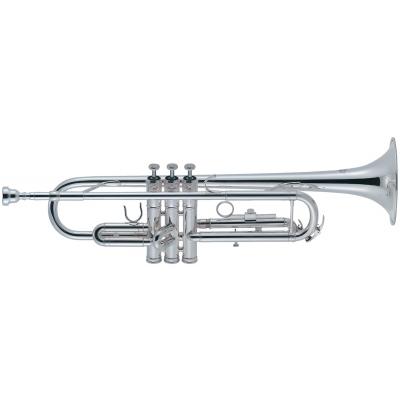 Труба J.MICHAEL TR-300SA (S)
