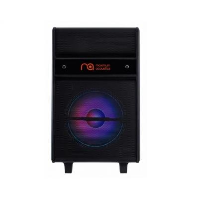 Акустическая система Maximum Acoustics MusicBAND.100