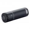 DPA microphones 2006C