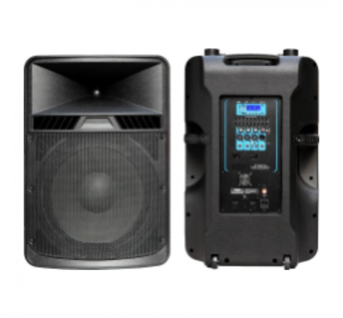 BIG PSDIGITAL15-600W active - активная акустическая система
