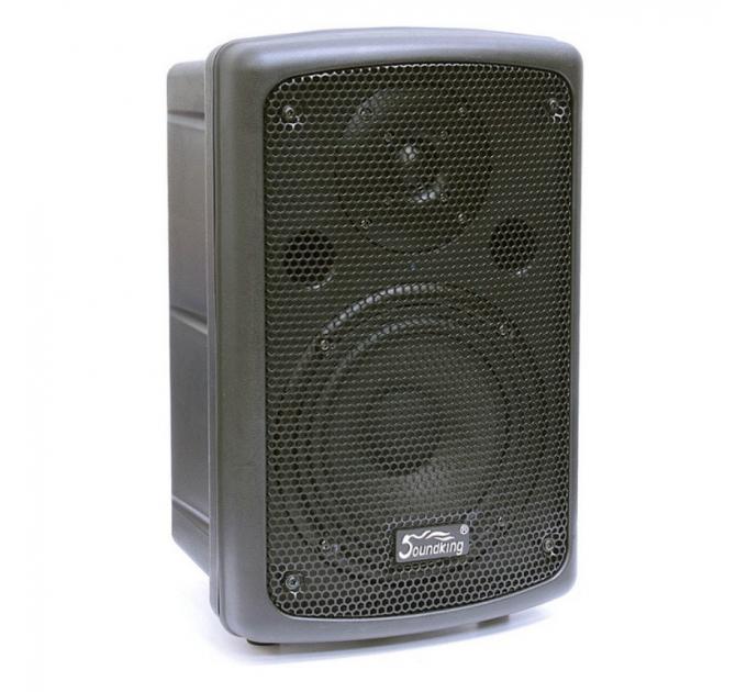 Soundking SKFP208A - активная акустическая система