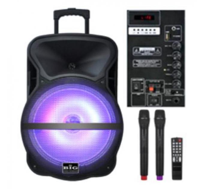 BIG BIG250BAT - автономная акустическая система