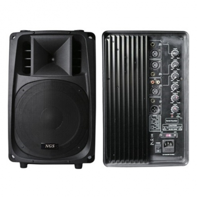 NGS PMO10A 10 120-240 Вт 8 Ом - активная акустическая система