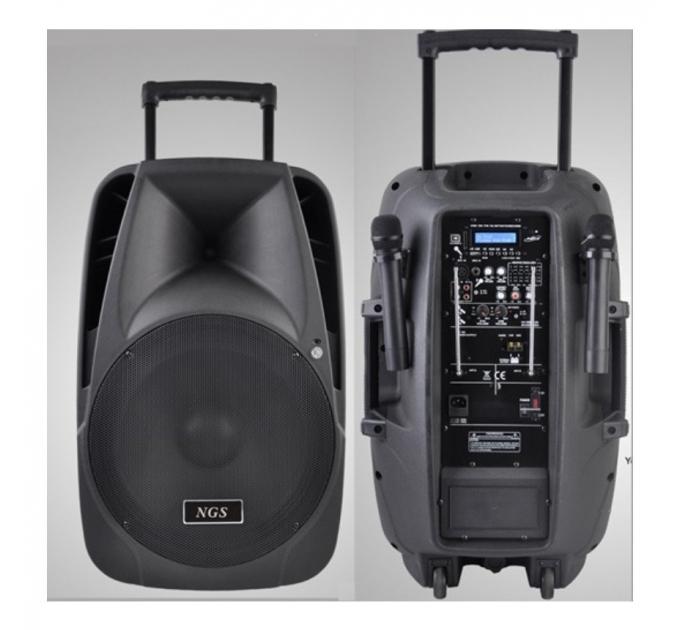 NGS PMQ12AMFQ-V2BP-BT 12 250Вт - автономная акустическая система