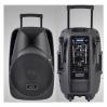 NGS PMQ15AMFQ-V2BP-BT 15 300Вт - активная акустическая система