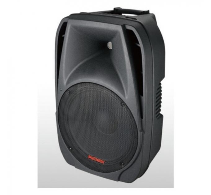 NGS PP-1915AUES 15-3 250-500Вт 8 Ом - активная акустическая система