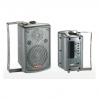 NGS PP-1965A 6.5-1 60-100 Вт 4 Ом - активная акустическая система