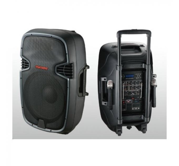 NGS PP-2115AUS-CB 15-2 400-600Вт 4 Ом - автономная акустическая система