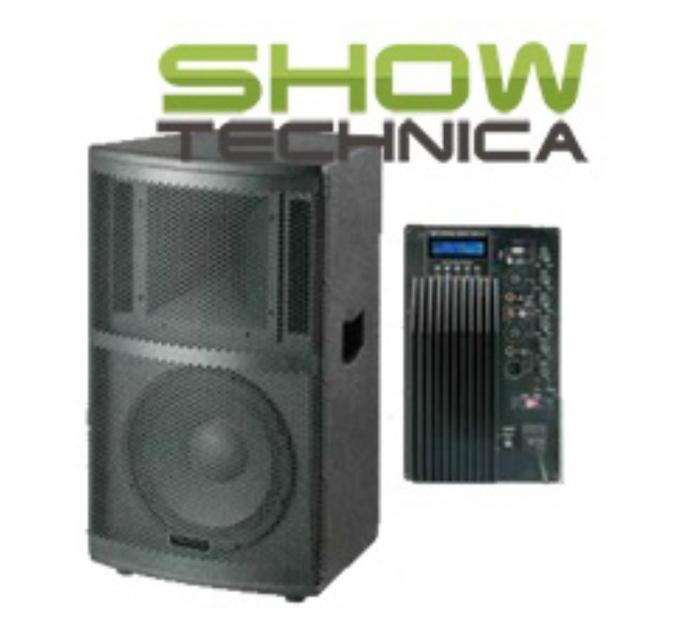 BIG PWF15A - активная акустическая система