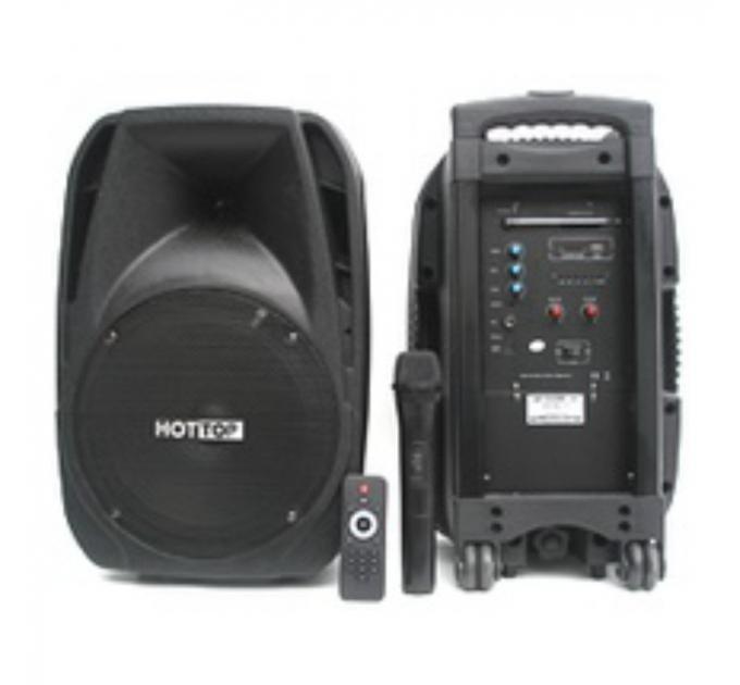 BIG Portable 10 220V - активная акустическая система
