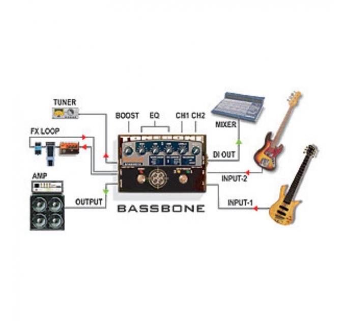 Radial Bassbone
