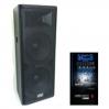BIG DIGITAL TIREX1000-MP3-BLT-EQ-FM - активная акустическая система