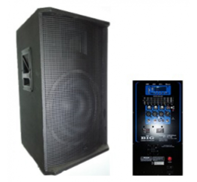 BIG DIGITAL TIREX600-MP3-BLT-EQ-FM - активная акустическая система