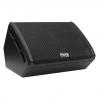 Park Audio SM124-P - активный напольный монитор