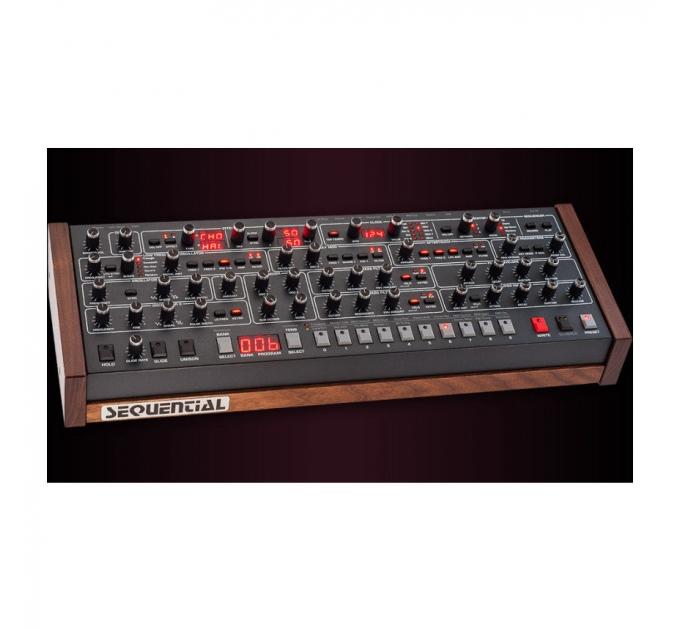 Dave Smith Instruments Prophet-6 Module