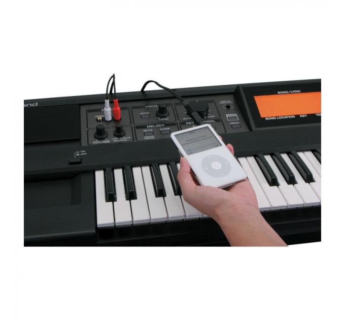 Синтезатор ROLAND VIMA RK-100
