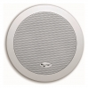 Трансляционная АС FBT Audio Contractor CSL 630TIC