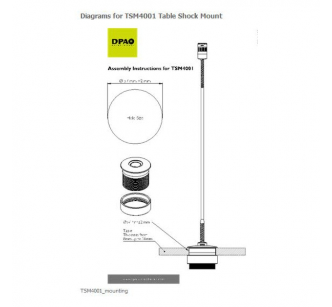 DPA microphones TSM4001